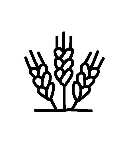 Schwarzes Icon Getreide Kirschleitenhof